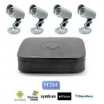 Kit Videosorveglianza con 4 telecamere Sony CCD 36 led 600 TVL, DVR 4 canali con Hard Disk 500 GB incluso